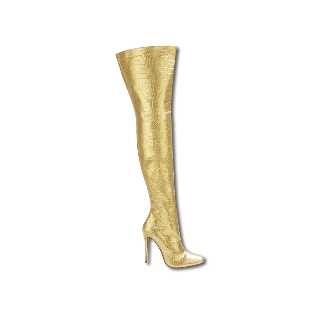 Sabrina Theresa Stiletto Fashionable Boots